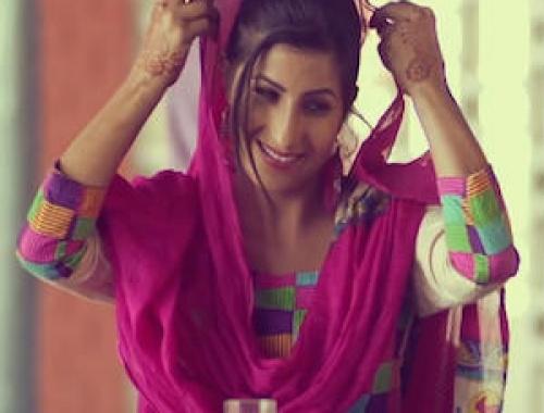 Teji Ranjit Singh Feat.Pankaj Ahuja - PUNJAB Ponch Gaye (Video)